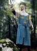 Wappenrock König Arthur (kaufen)