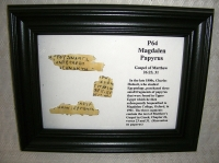 Papyrus P64 (kaufen)
