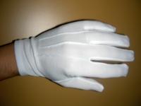 Handschuhe (mieten)
