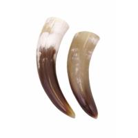 Trinkhorn ca. 2-3 dl (kaufen)