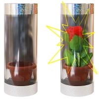 Trick Appearing Rose in Tube (kaufen)