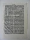 Bibelseite Lateinische Bibel Locatellus 1489  Inkunabel (kaufen)