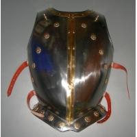 Harnisch / Ritterrüstung (kaufen)