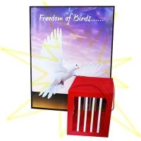 Trick Freedom of Birds (kaufen)