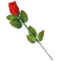 Trick Instant Rose (kaufen)